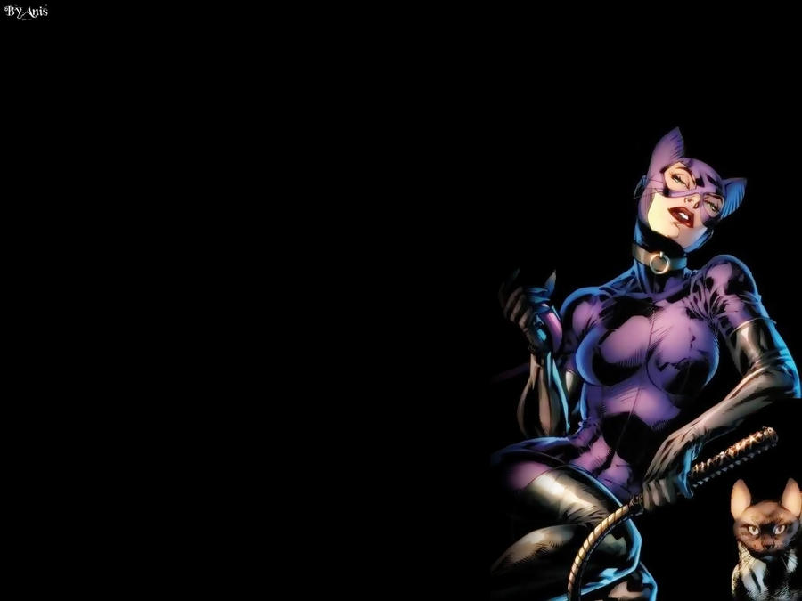 Catwoman Wallpaper 17 by Anita255 on DeviantArt