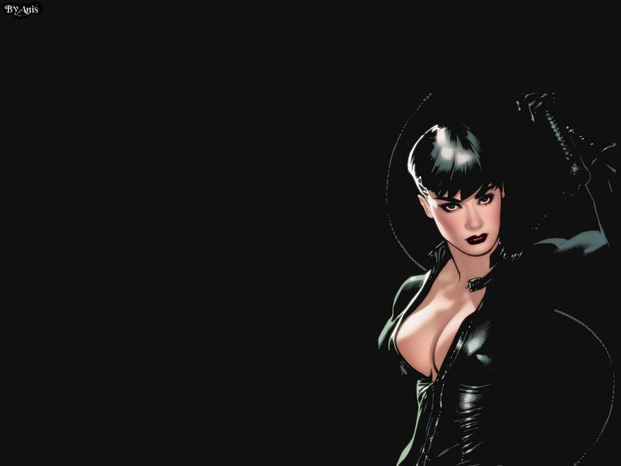 Catwoman Wallpaper 18 by Anita255 on deviantART
