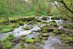 Scalby Brook