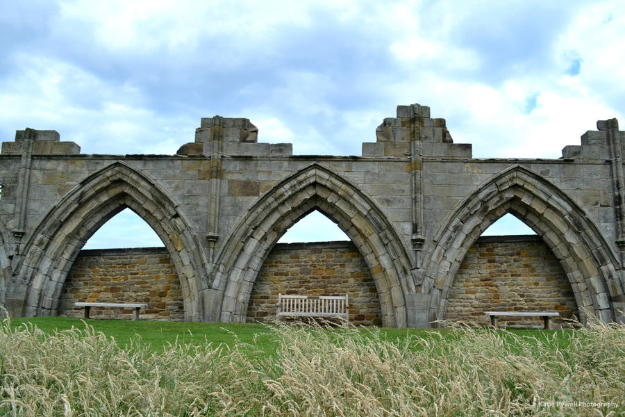 Whitby Arches by Lady---Vengeance