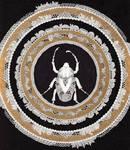 Imperial Beetle