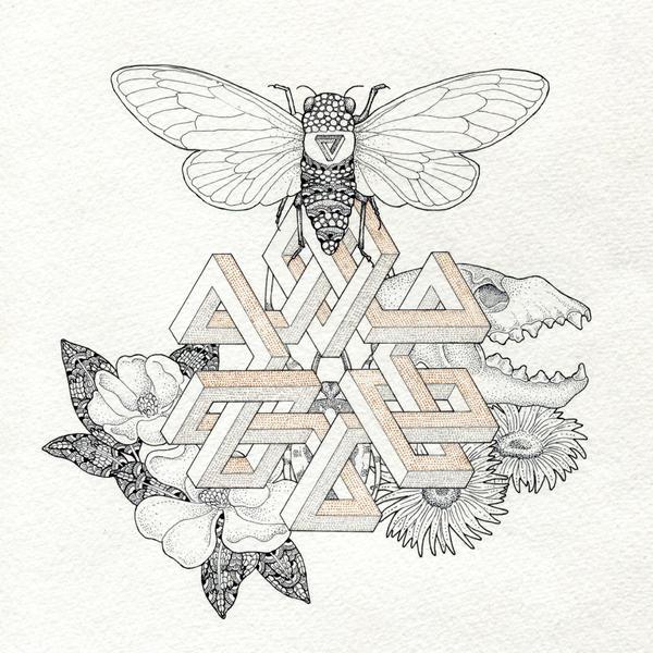 The impossible Cicada by IngeVandormael