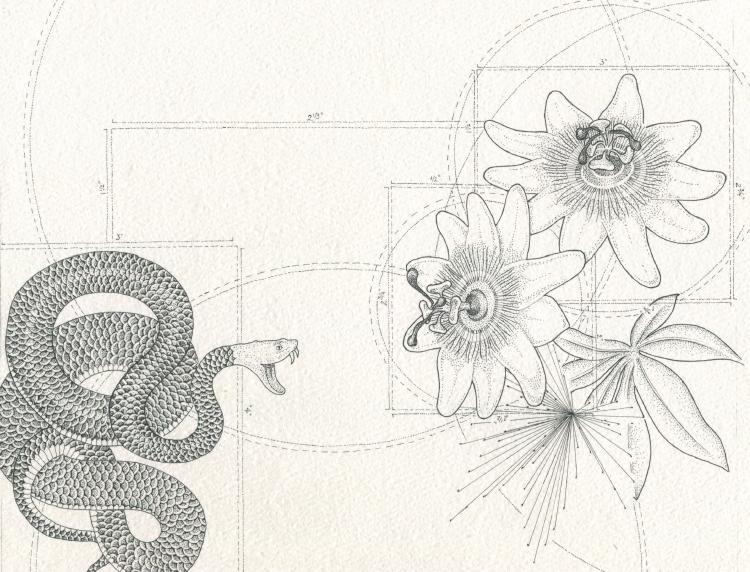 The Serpent by IngeVandormael