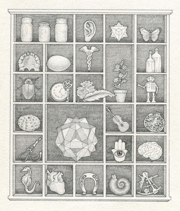 Curiosity Cabinet by IngeVandormael