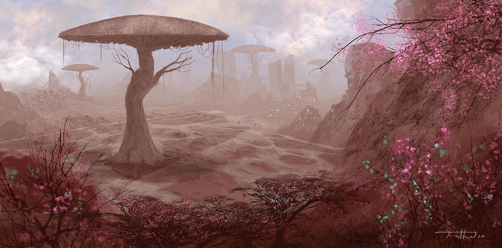 Desert Shrooms by tonyhurst