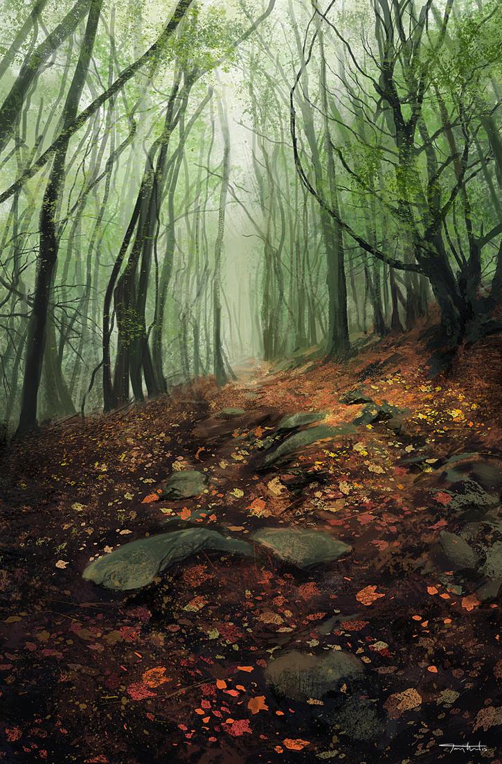 Misty Trees by tonyhurst
