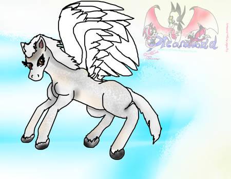 Soarwing Filly or Foal Pegasus by AngelCnderDream14