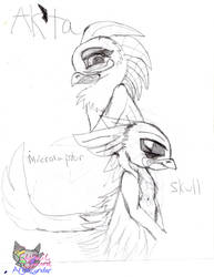 Ak'ta and skull Sketch by AngelCnderDream14