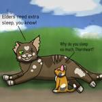 WCs OCS: Elders Need Extra Sleep, You Know!