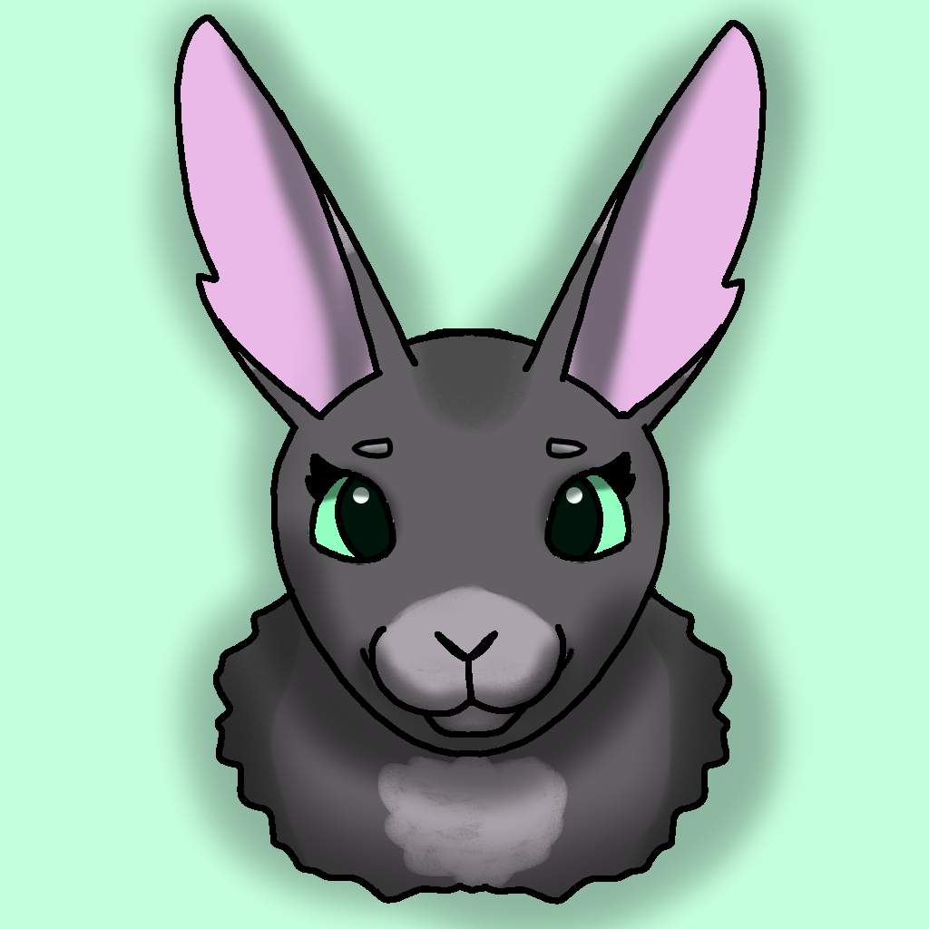 Lily The Rabbit