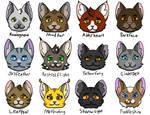 Warrior Cats: Medicine Cats Redesigns