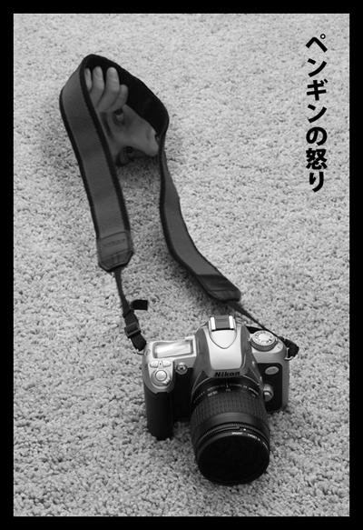 Kamera no Ushiro by penginnoikari