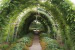 Green tunnel 01