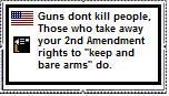2nd Amendment stamp by TheHylianHaunter