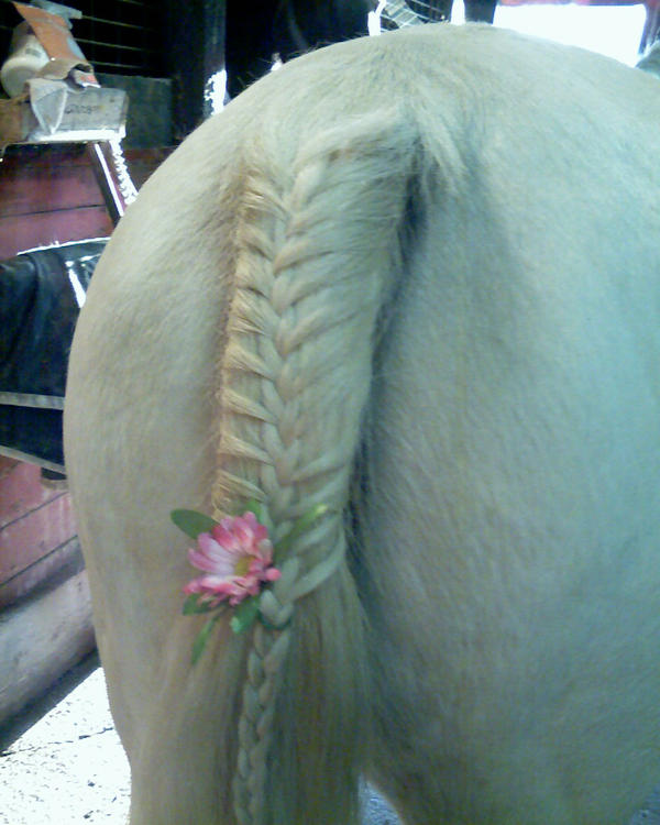 Pin Pin French Braids Pretty Unique Braiding Hairstyles 2012 For Girls ...
