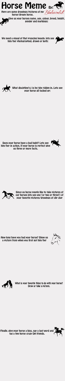 HORSE MEME by BloodStainedSilk