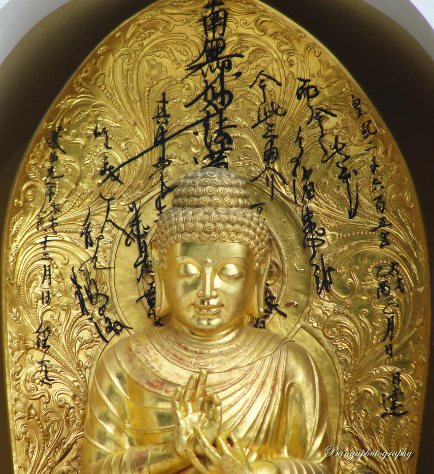 colden buddhist dating site The online dating sites listed below are focused on connecting individuals who live (or strive to live) a buddhist inspired lifestyle.