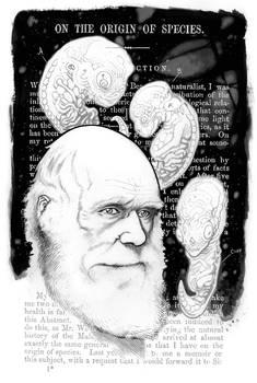 Happy Darwin Day 2012