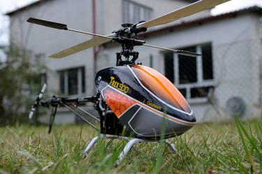 T-rex 500 custom Canopy 2 by n8schattengewaechs