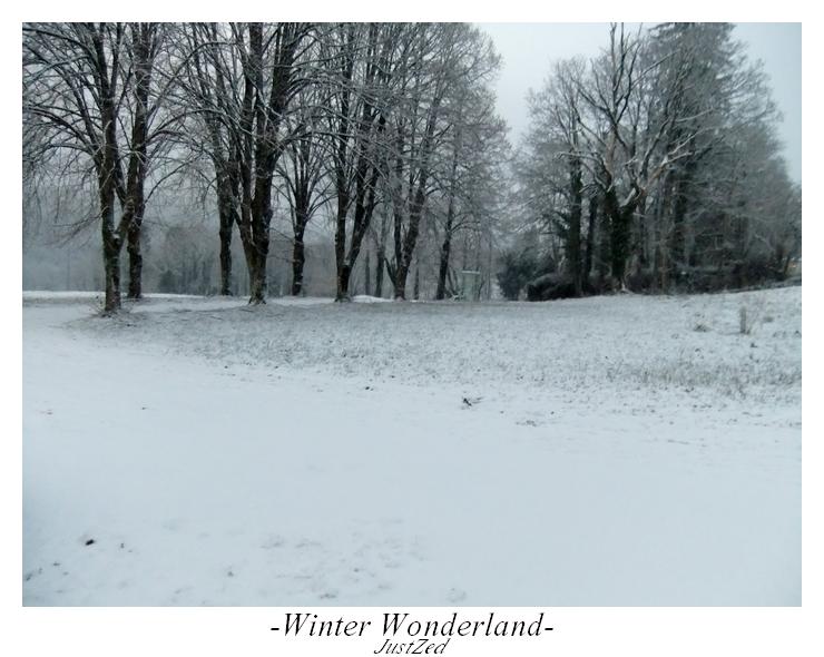 Winter Wonderland #1 by justzed
