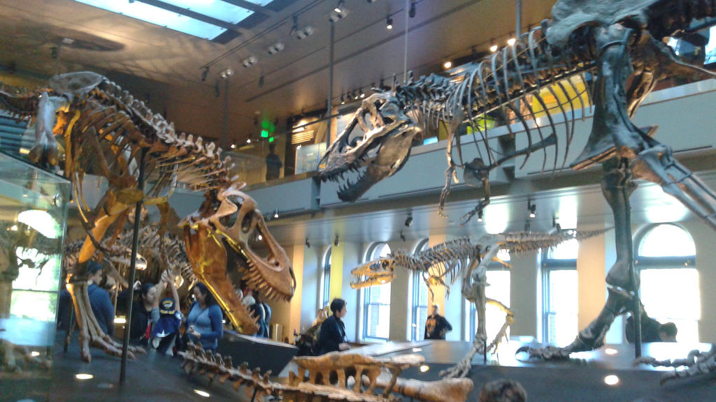 T rex family by scarletskyalar on deviantart for T rex family