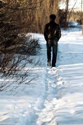 Wistful Winter Walk