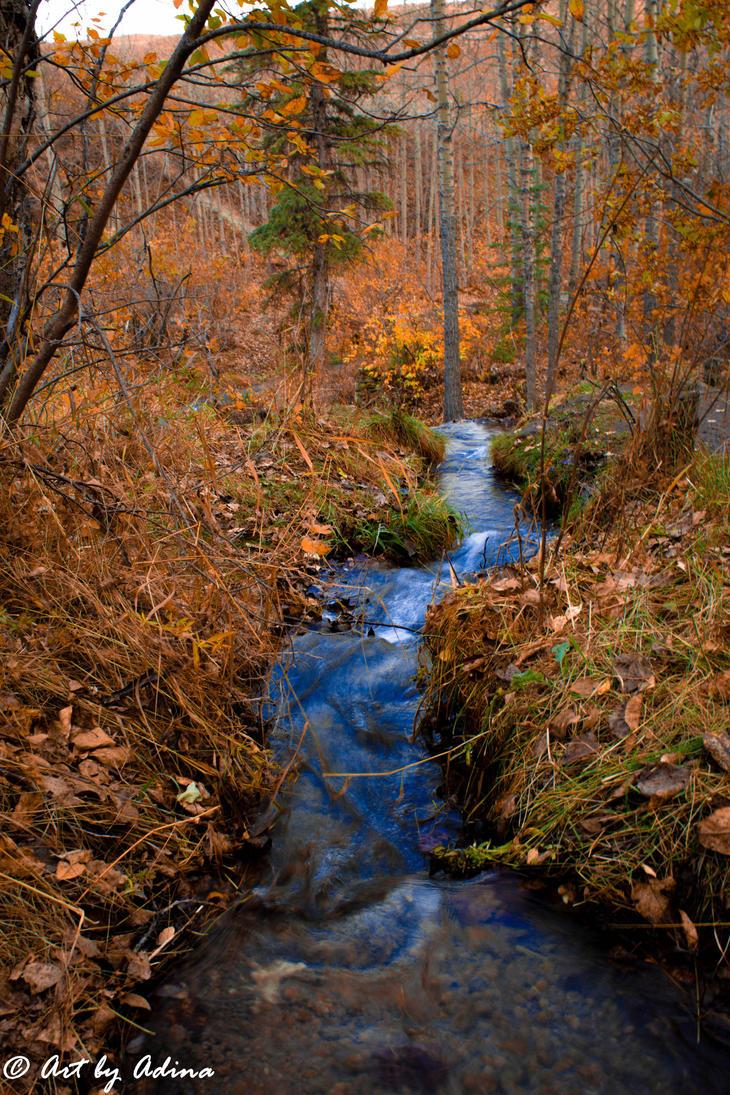Autumn Stream by artbyadina