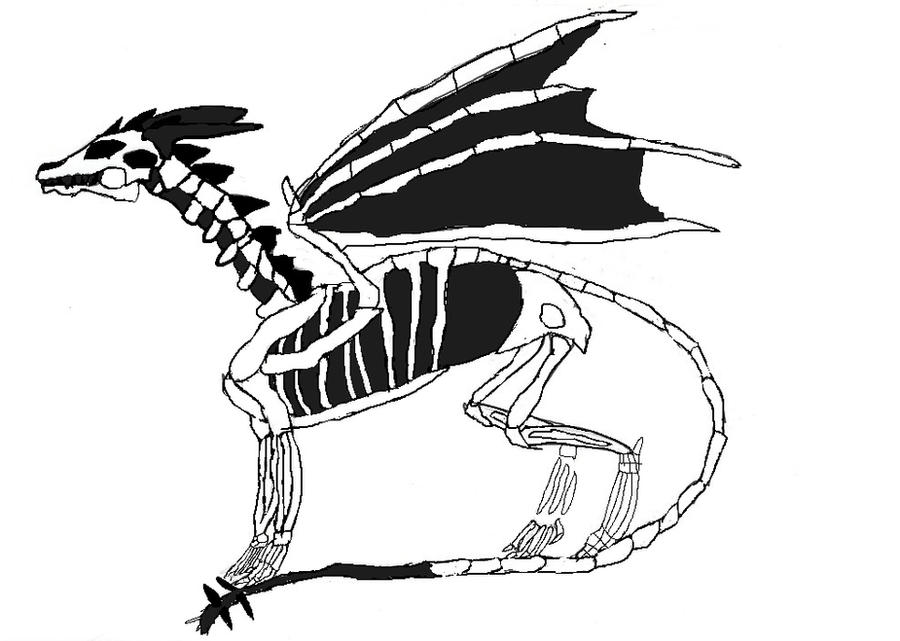 bone Dragon  by zansuro