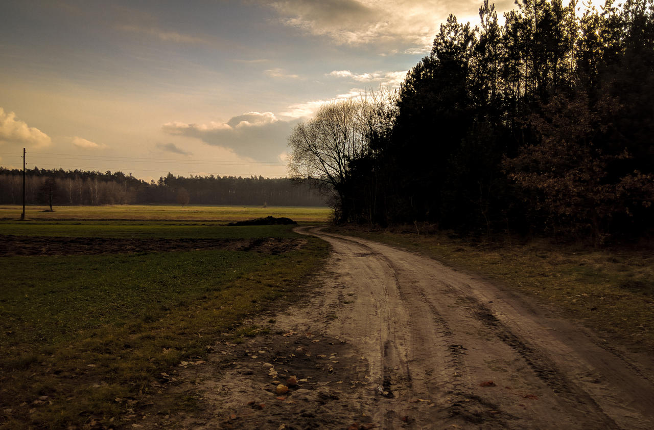 country_road_by_rdzeniuch-dc25aym.jpg