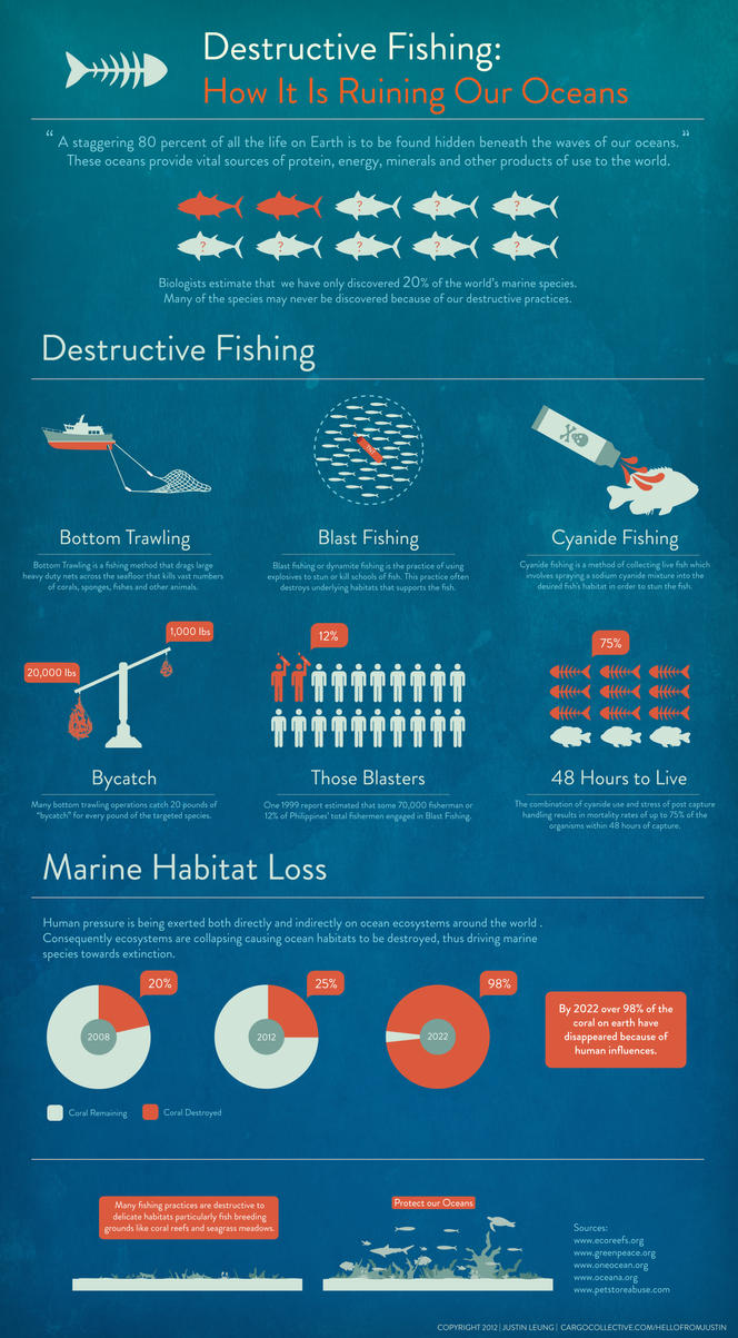 infographic destructive fishing by airduster on deviantart