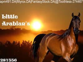 LittleArabian'savatar by Jayfeather3744