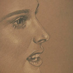 Highlights Study (Natalie Portman Sketch) by Yakov-Lavan