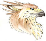 Waterbrush Gryph