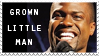 kevin hart stamp 3 by mishkuu