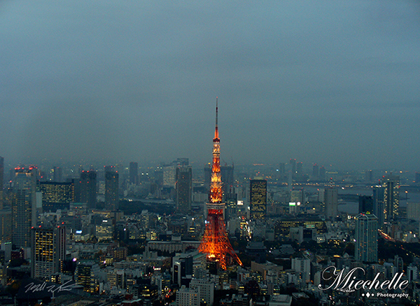 tokyo at dusk by mishkuu