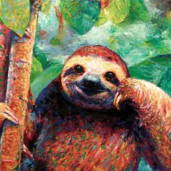 Sloth study
