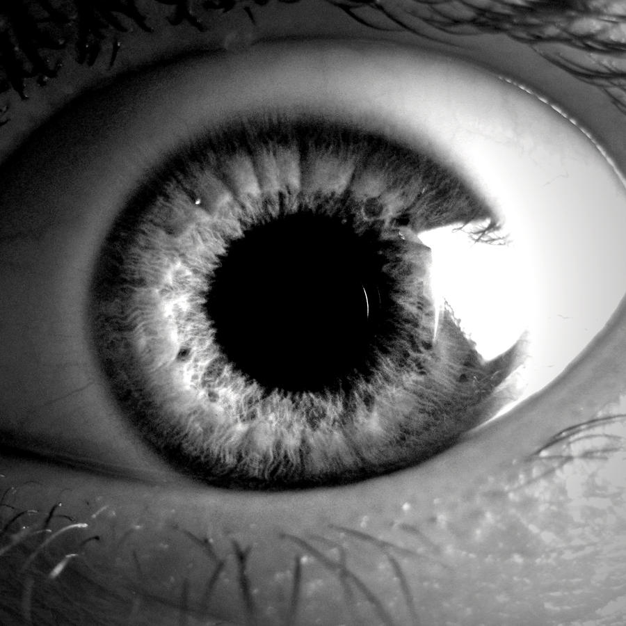 madness is in the eye of Summary of stanza 1 of the poem much madness is divinest sense— line-by  coupled with the capitalized eye, it feels like the speaker is referring to all.