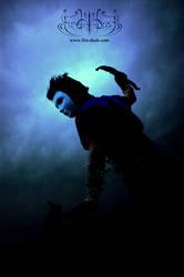 Shadows of Dusk - Nighthawk by MD-Arts
