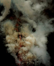 Smoke - I by MD-Arts