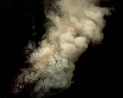Smoke - III by MD-Arts