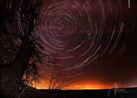 Star-Trails and Lime-Tree