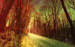 Winter Forest - II