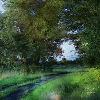 Late Afternoon Path by MD-Arts
