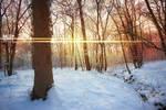 Snow Flare