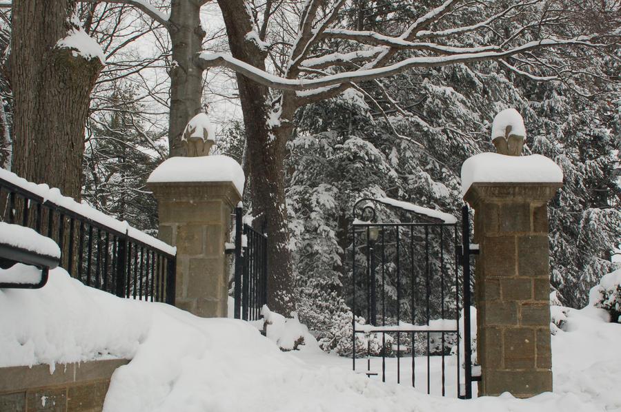 Gate by Green-Ocean-Stock
