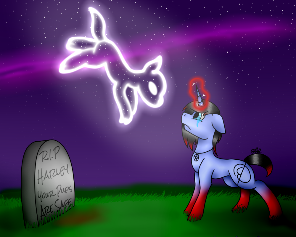 Rest In Peace by MidNightFlyer53