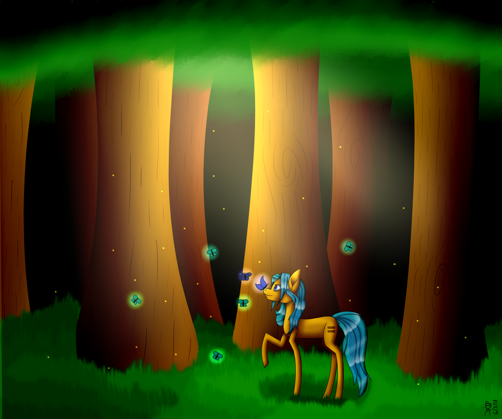 Forest by MidNightFlyer53