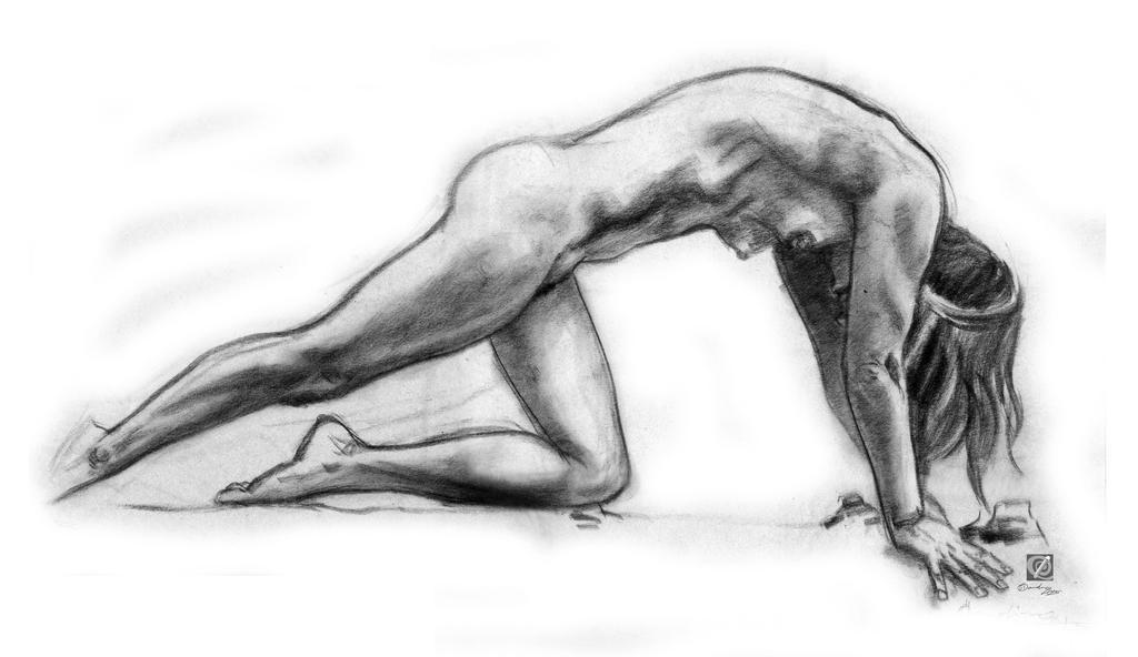 charcoal study 015 by chclaudino