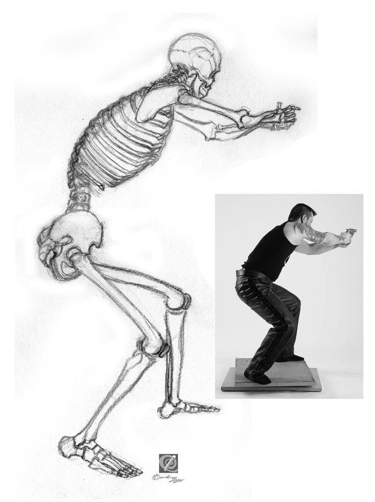 skeleton study by chclaudino