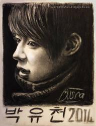 Yuchun charcoal